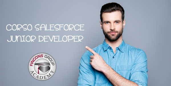 Salesforce Junior Developer